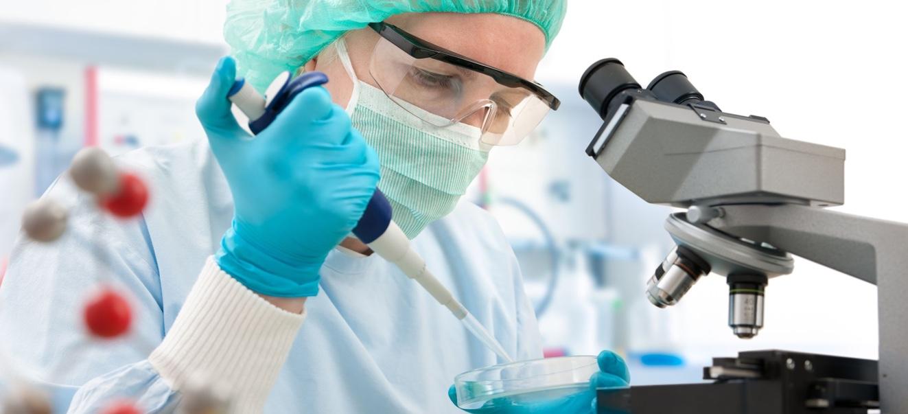 Донорство яйцеклеток и спермы: действенная методика ВРТ