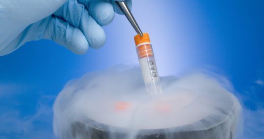 Заморозка яйцеклеток: стоимость и шансы на успех